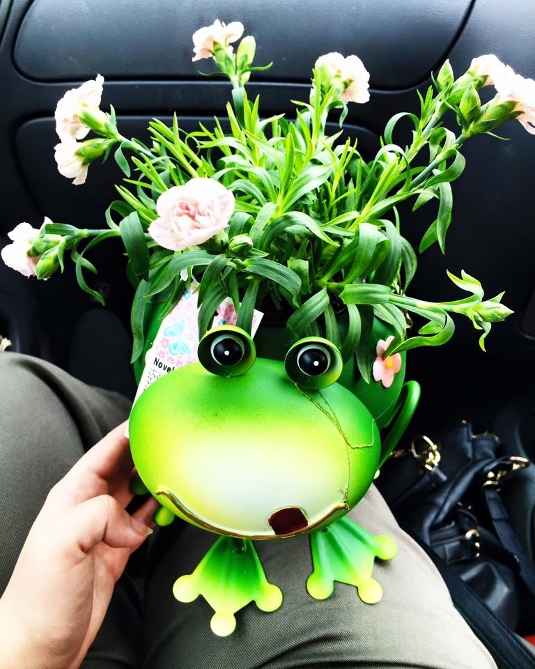 Mothers day - Frog.jpg